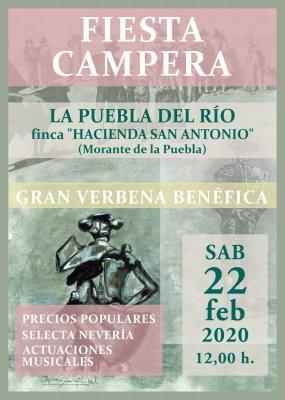 FFIESTA CAMPERA 2020.jpg